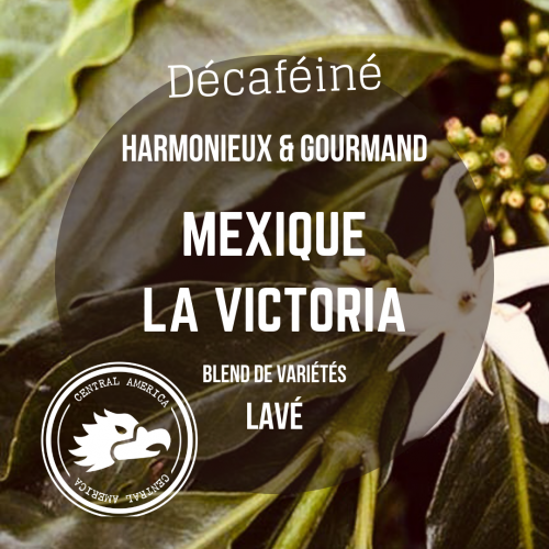 Café Mexique – La Victoria – Arabica lavé
