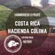 Costa Rica - Hacienda Colima